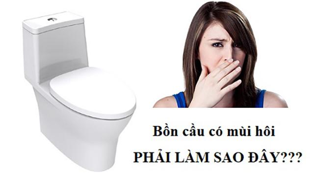 khử mùi hôi nhà vệ sinh xuất phát từ bồn càua