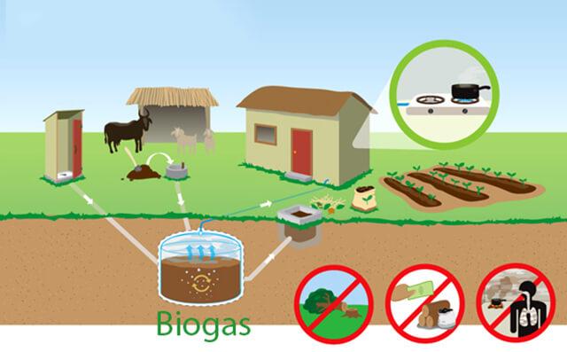 Cơ chế hình thành khí Biogas
