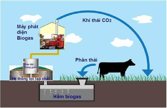 Khí biogas là gì