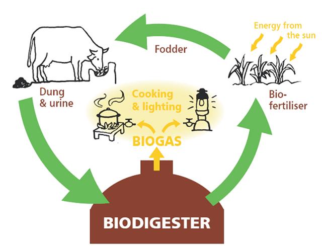 Ứng dụng của khí Biogas