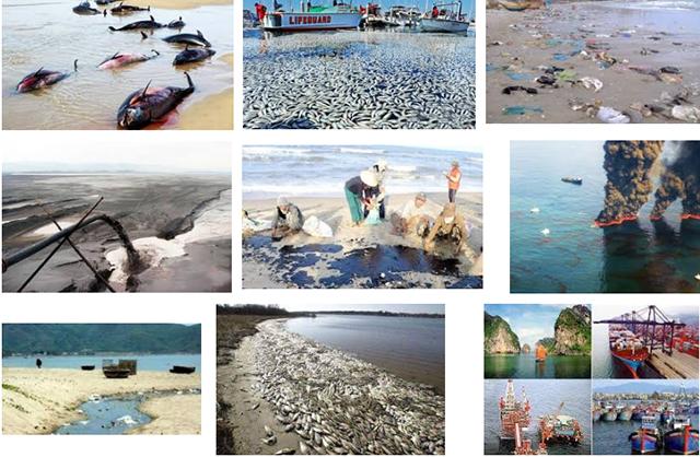Hậu quả của ô nhiễm môi trường biển